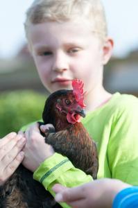 Kinder und Tiere IV