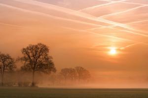 Morgenstimmung im Münsterland