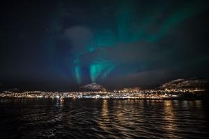 Nordlicht über Skjervoy-20190302-36