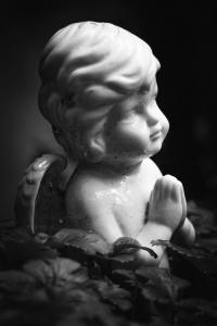 Waldfriedhof Lauheide-20170804-10