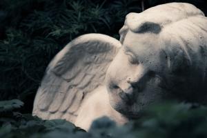 Waldfriedhof Lauheide-20170804-65