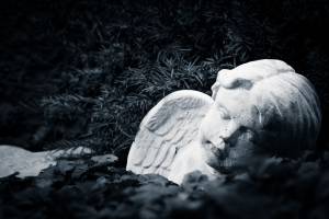 Waldfriedhof Lauheide-20170804-69