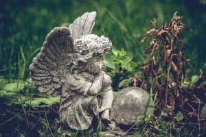 Waldfriedhof Lauheide-20170804-77