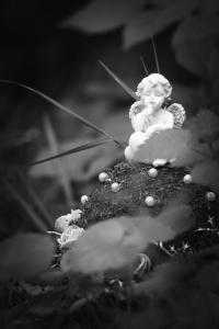 Waldfriedhof Lauheide-20170804-80