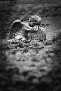 Waldfriedhof Lauheide-20170804-90