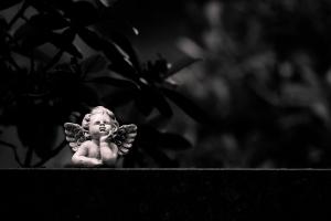 Waldfriedhof Lauheide-20170804-99