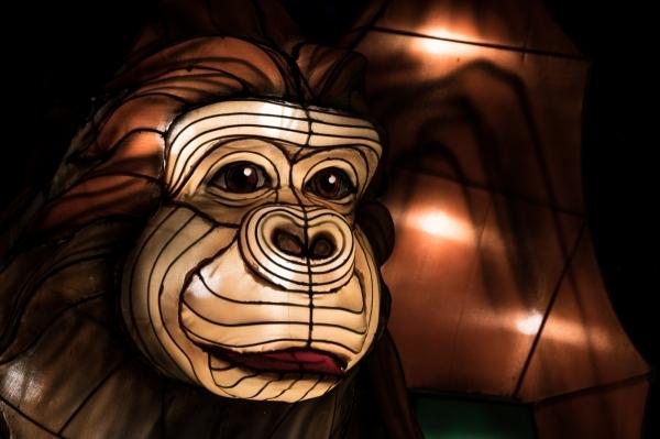 Chinesische Lichter, Affe